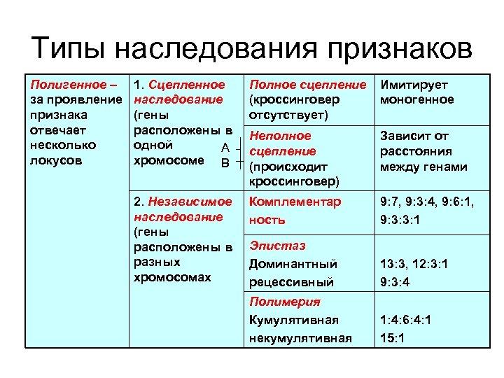 Типы наследования признаков Полигенное – за проявление признака отвечает несколько локусов 1. Сцепленное наследование