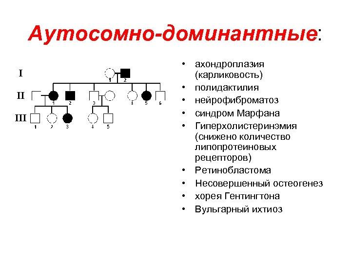 Аутосомно-доминантные: • ахондроплазия (карликовость) • полидактилия • нейрофиброматоз • синдром Марфана • Гиперхолистеринэмия (снижено