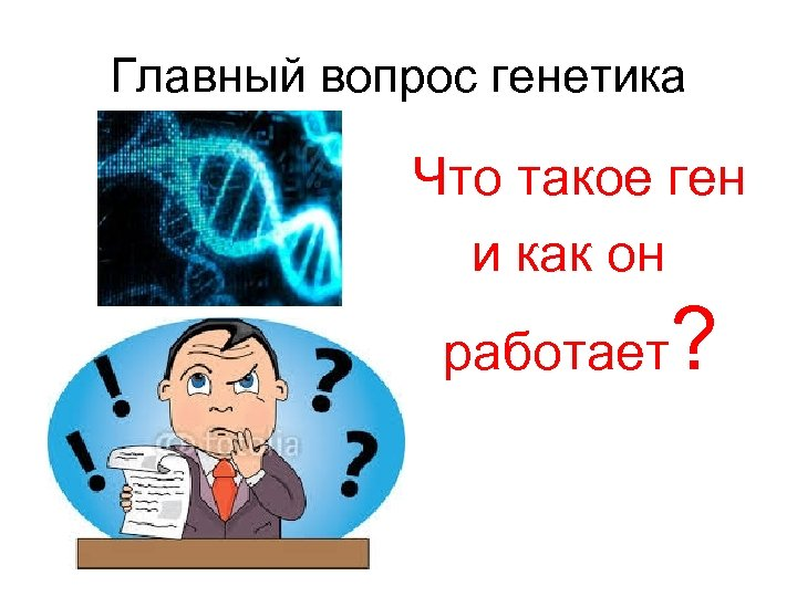 Главный вопрос генетика Что такое ген и как он работает ?