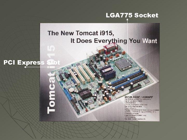 LGA 775 Socket PCI Express Slot