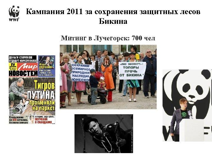 Кампания 2011 за сохранения защитных лесов Бикина Митинг в Лучегорск: 700 чел