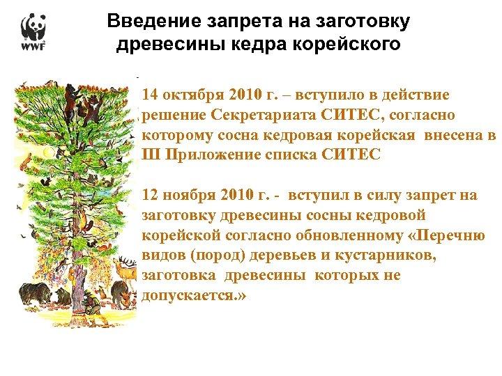 Введение запрета на заготовку древесины кедра корейского 14 октября 2010 г. – вступило в