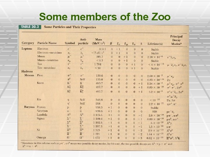 Some members of the Zoo