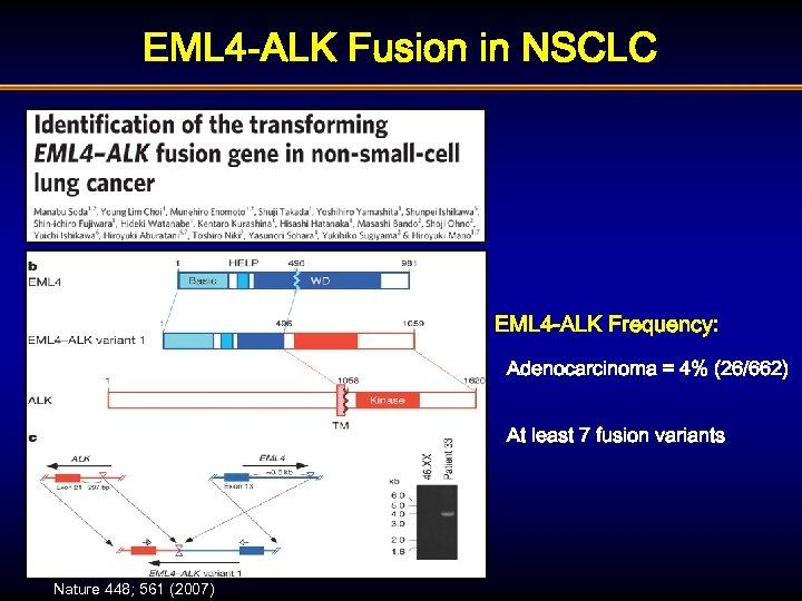 EML 4 -ALK Fusion in NSCLC EML 4 -ALK Frequency: Adenocarcinoma = 4% (26/662)