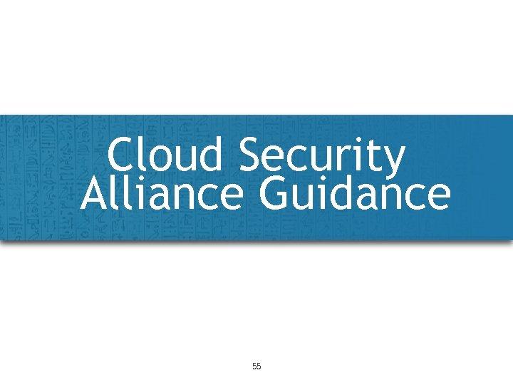 Cloud Security Alliance Guidance 55