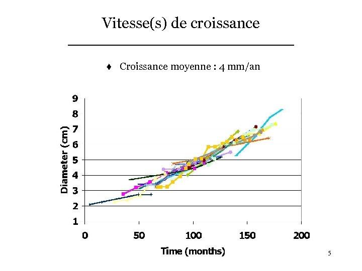 Vitesse(s) de croissance t Croissance moyenne : 4 mm/an 5
