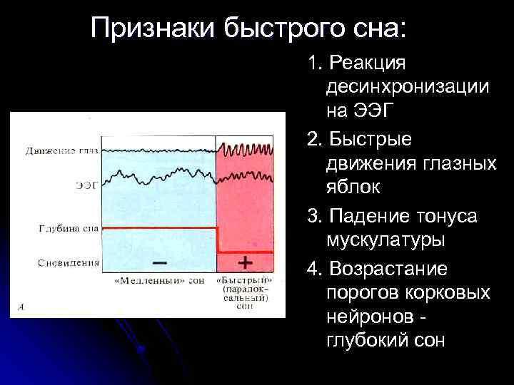 Признаки быстрого сна: 1. Реакция десинхронизации на ЭЭГ 2. Быстрые движения глазных яблок 3.