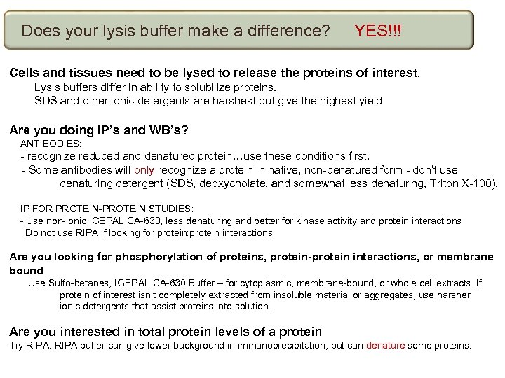 Does your lysis buffer make a difference? YES!!! Cells and tissues need to be
