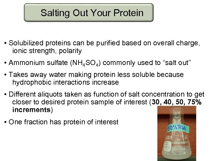 Salting Out Your Protein • Solubilized proteins can be purified based on overall charge,