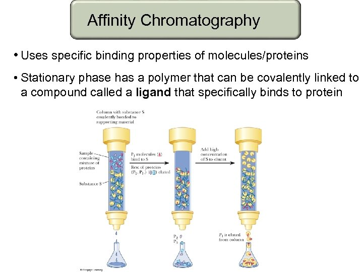 Affinity Chromatography • Uses specific binding properties of molecules/proteins • Stationary phase has a