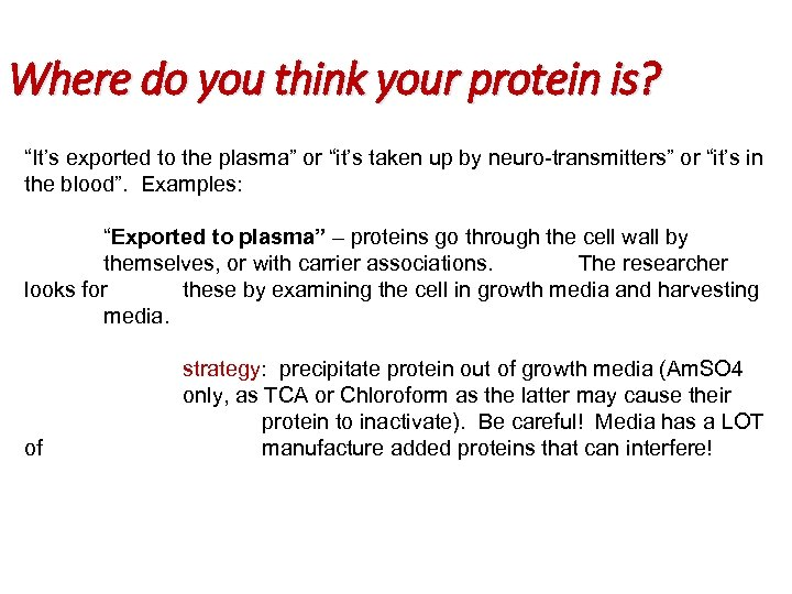 """Where do you think your protein is? """"It's exported to the plasma"""" or """"it's"""