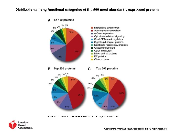 Distribution among functional categories of the 500 most abundantly expressed proteins. Burkhart J M