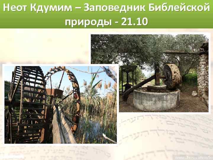 Неот Кдумим – Заповедник Библейской природы - 21. 10