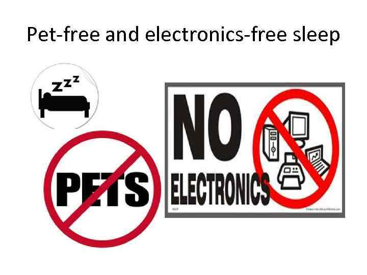 Pet-free and electronics-free sleep