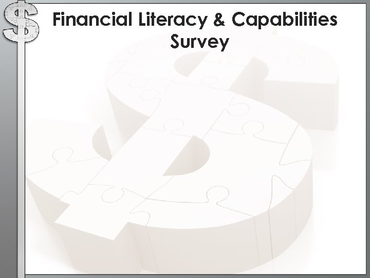 Financial Literacy & Capabilities Survey