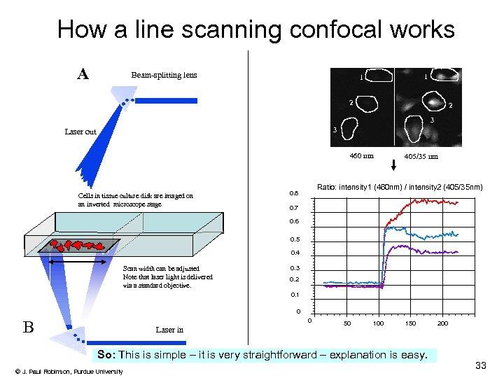 How a line scanning confocal works A Beam-splitting lens 1 1 2 2 3