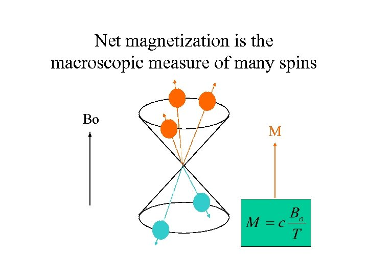 Net magnetization is the macroscopic measure of many spins Bo M