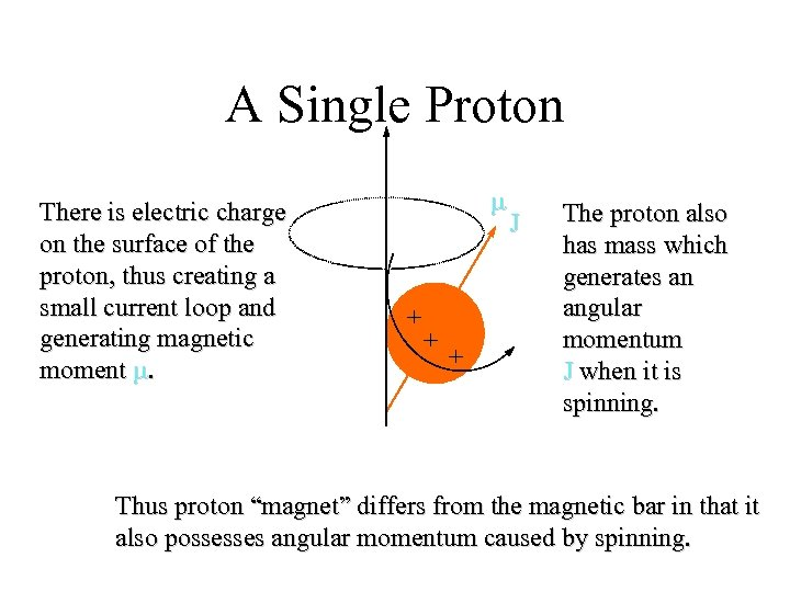 A Single Proton There is electric charge on the surface of the proton, thus