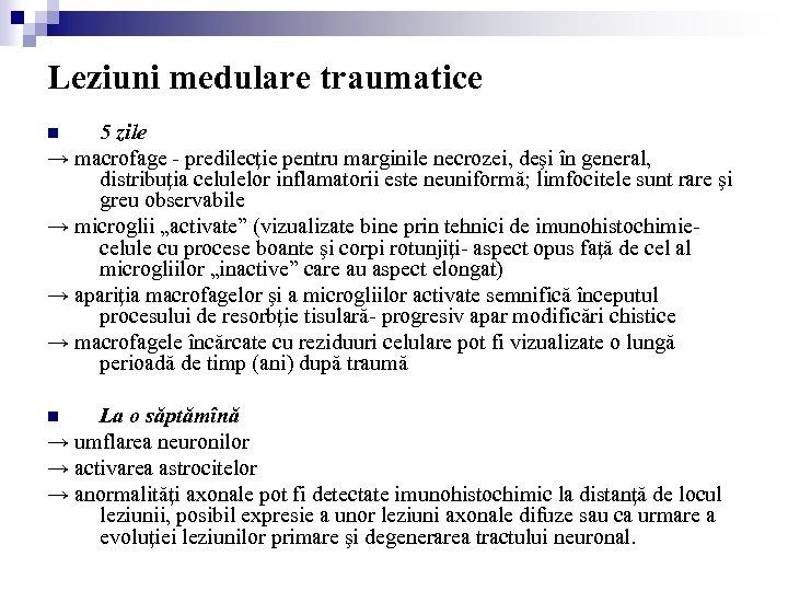 Leziuni medulare traumatice 5 zile → macrofage - predilecţie pentru marginile necrozei, deşi în