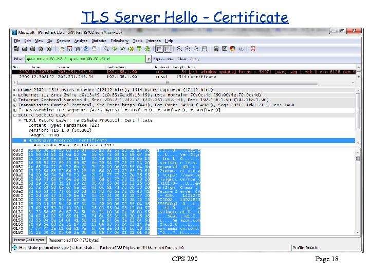 TLS Server Hello – Certificate CPS 290 Page 18