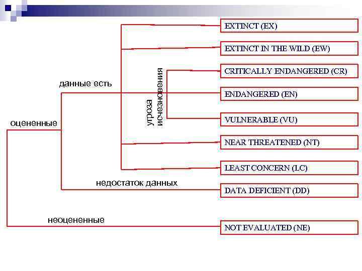 EXTINCT (EX) данные есть оцененные угроза исчезновения EXTINCT IN THE WILD (EW) CRITICALLY ENDANGERED