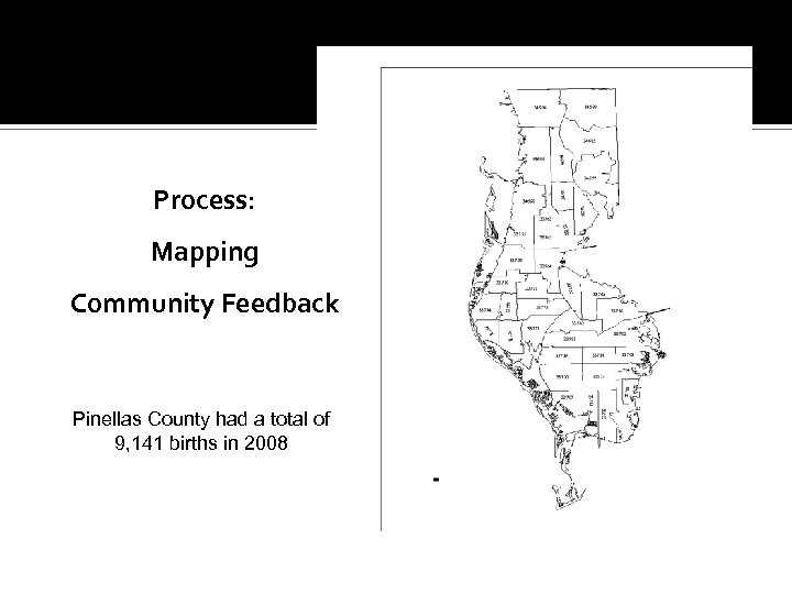 Process: Mapping Community Feedback Pinellas County had a total of 9, 141 births in
