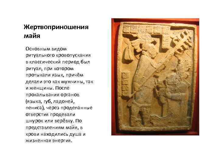 Жертвоприношения майя Основным видом ритуального кровопускания в классический период был ритуал, при котором протыкали