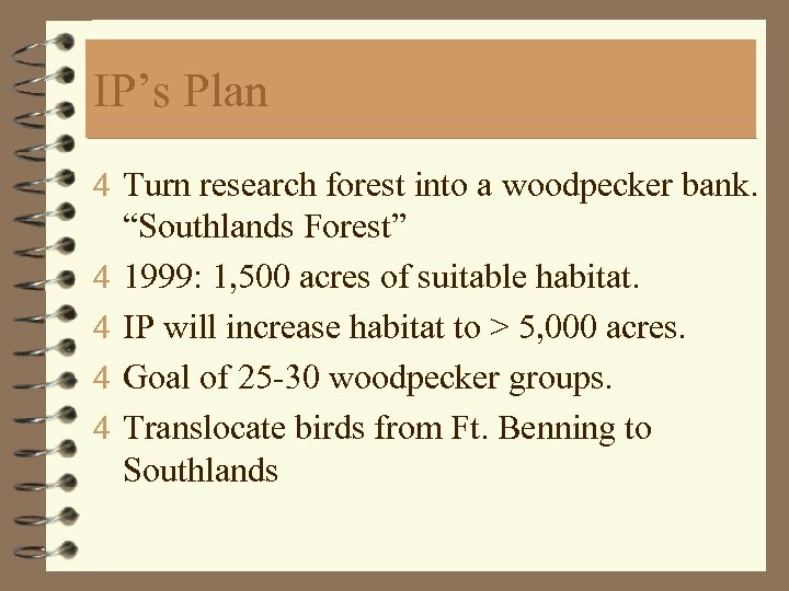 """IP's Plan 4 Turn research forest into a woodpecker bank. 4 4 """"Southlands Forest"""""""
