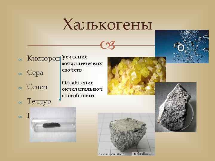Халькогены Кислород Усиление Сера Селен Теллур Полоний металлических свойств Ослабление окислительной способности