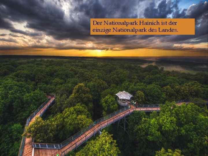 Der Nationalpark Hainich ist der einzige Nationalpark des Landes.