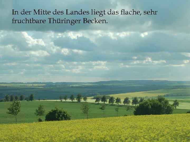 In der Mitte des Landes liegt das flache, sehr fruchtbare Thüringer Becken.