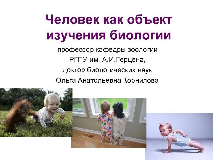 Человек как объект изучения биологии профессор кафедры зоологии РГПУ им. А. И. Герцена, доктор