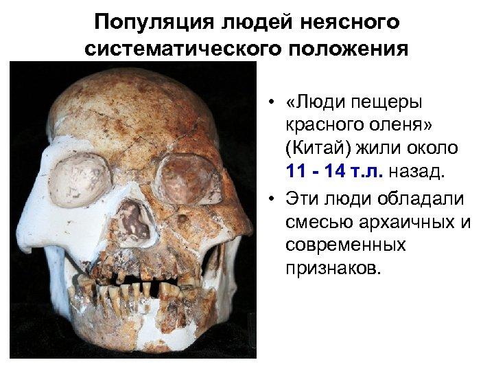 Популяция людей неясного систематического положения • «Люди пещеры красного оленя» (Китай) жили около 11