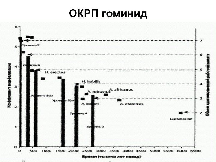 ОКРП гоминид
