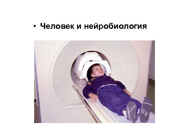 • Человек и нейробиология
