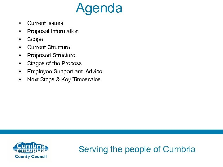 Agenda • • Current issues Proposal Information Scope Current Structure Proposed Structure Stages of
