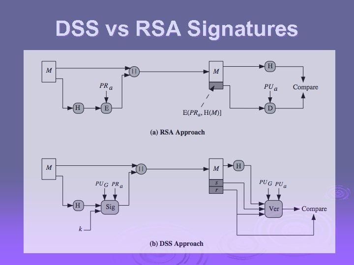 DSS vs RSA Signatures