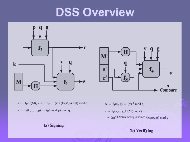 DSS Overview