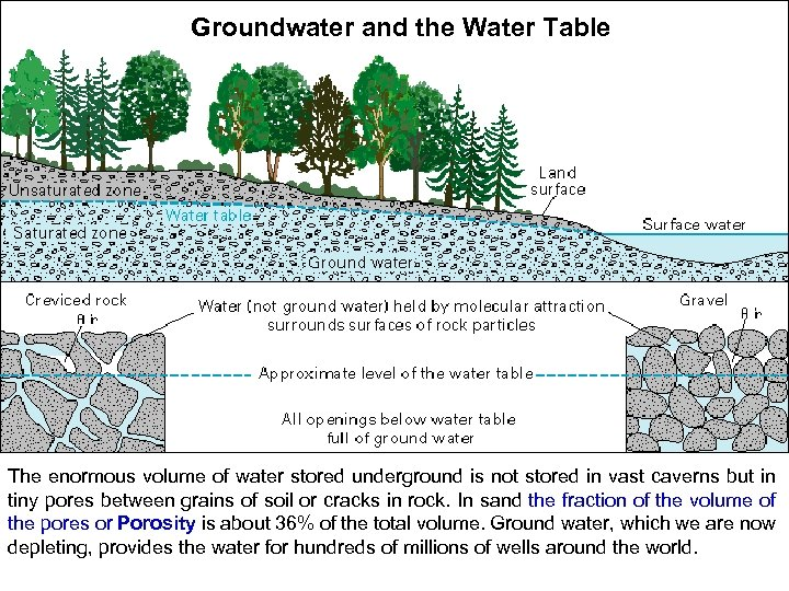 Groundwater and the Water Table The enormous volume of water stored underground is not