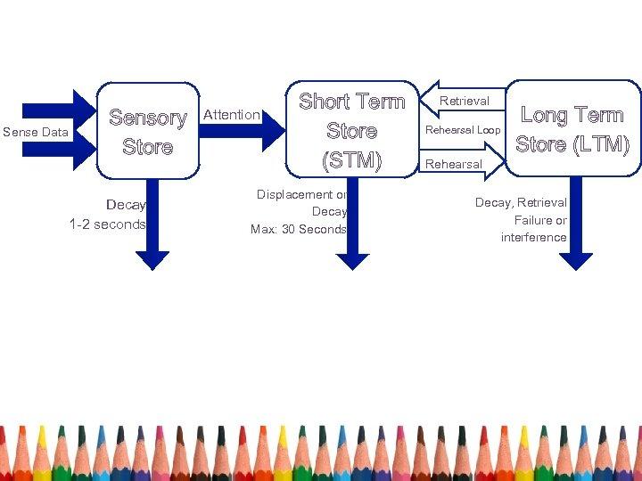Sense Data Sensory Store Retrieval Rehearsal Loop Long Term Store (LTM) Rehearsal Decay, Retrieval