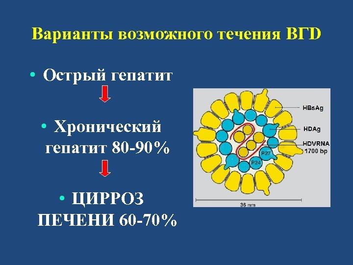 Варианты возможного течения ВГD • Острый гепатит • Хронический гепатит 80 -90% • ЦИРРОЗ