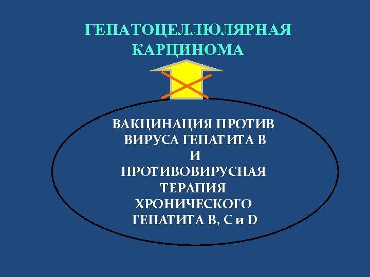 ГЕПАТОЦЕЛЛЮЛЯРНАЯ КАРЦИНОМА ВАКЦИНАЦИЯ ПРОТИВ ВИРУСА ГЕПАТИТА В И ПРОТИВОВИРУСНАЯ ТЕРАПИЯ ХРОНИЧЕСКОГО ГЕПАТИТА B, C