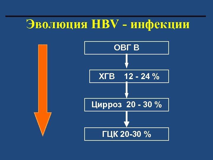 Эволюция HВV - инфекции ОВГ В ХГВ 12 - 24 % Цирроз 20 -