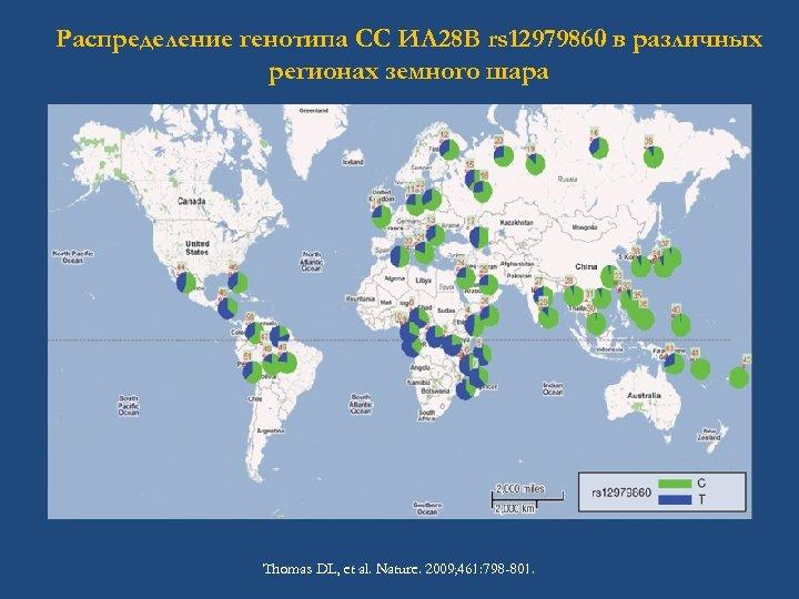 Распределение генотипа СС ИЛ 28 B rs 12979860 в различных регионах земного шара Thomas