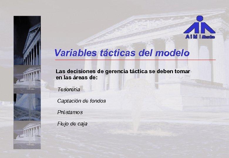 Variables tácticas del modelo Las decisiones de gerencia táctica se deben tomar en las