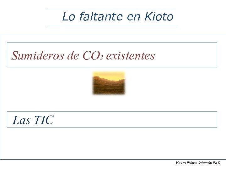 Lo faltante en Kioto Sumideros de CO 2 existentes . Las TIC Mauro Flòrez