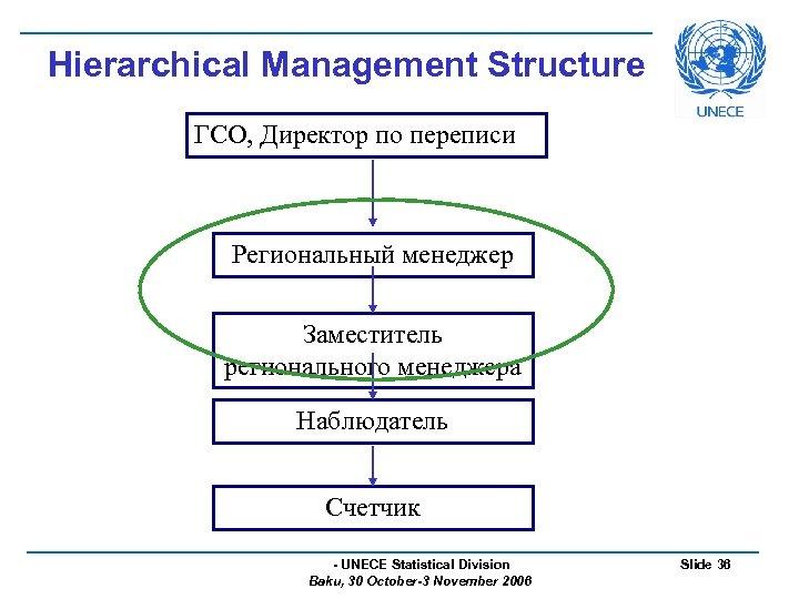 Hierarchical Management Structure ГСО, Директор по переписи Региональный менеджер Заместитель регионального менеджера Наблюдатель Счетчик