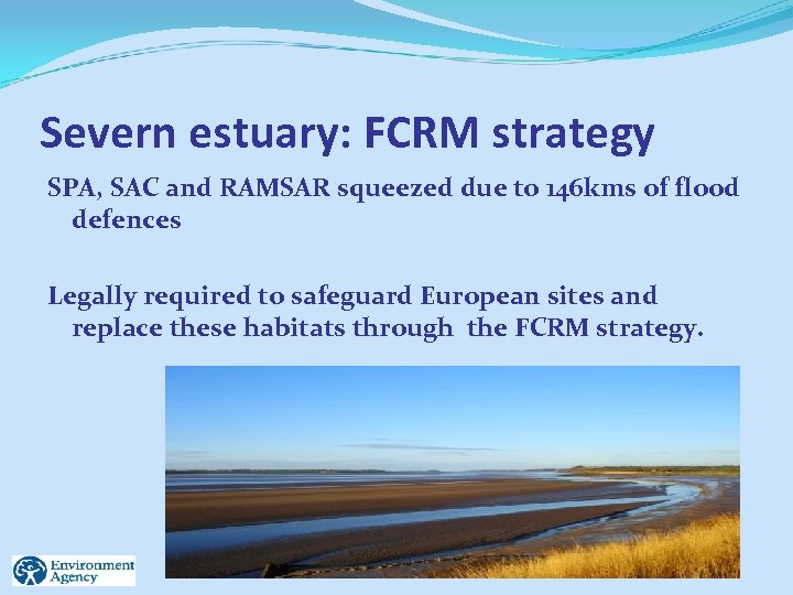 Severn estuary: FCRM strategy SPA, SAC and RAMSAR squeezed due to 146 kms of