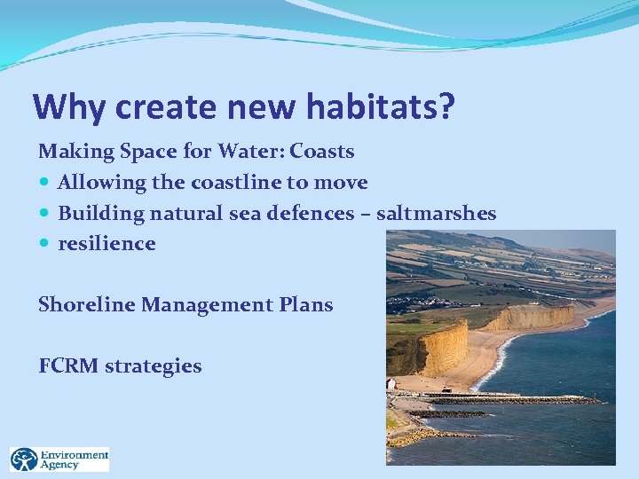 Why create new habitats? Making Space for Water: Coasts Allowing the coastline to move