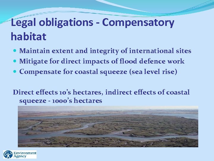 Legal obligations - Compensatory habitat Maintain extent and integrity of international sites Mitigate for
